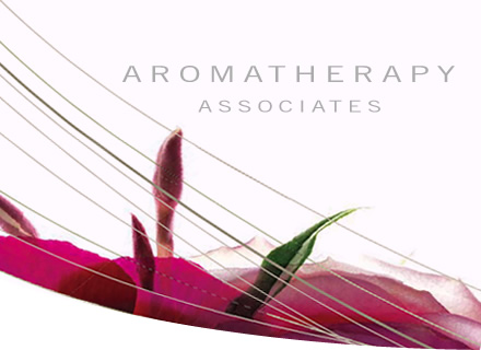 aromatherapy associates body and massage treatments